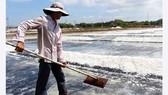 Hoang phế dự án kho dự trữ muối