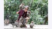 Du khách đến Đảo Khỉ, Cần Giờ