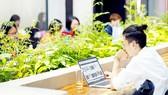 Nhiều bạn trẻ chuộng hình thức làm việc từ xa, thoải mái về thời gian lẫn không gian làm việc