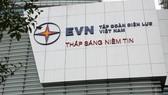 2 nhà đầu tư cá nhân mua 86,6% cổ phần chào bán tại EVF