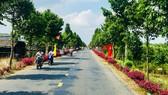 Đường nông thôn mới về trung tâm huyện Châu Thành A