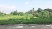Bình Phước: Nhiều sai phạm trong quản lý đất tại các khu công nghiệp