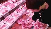 Gần 1.500 tấn thịt heo nhập khẩu đã về cảng