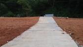 Đường bê tông xây dựng trên đất nông nghiệp tại Đà Lạt. Ảnh: ĐOÀN KIÊN