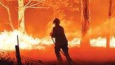 Chữa cháy rừng tại Australia