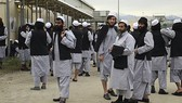 Afghanistan: Phóng thích tù nhân Taliban đổi lệnh ngừng bắn