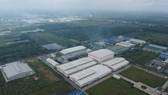 Khu công nghiệp Lê Minh Xuân tại huyện Bình Chánh, TPHCM. Ảnh: CAO THĂNG