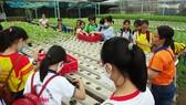 """Các học sinh trải nghiệm trồng rau qua Cuộc thi """"Văn hay chữ tốt"""""""
