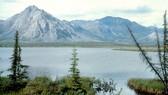 Một góc Khu bảo tồn động vật hoang dã quốc gia Bắc cực ở bang Alaska, Mỹ