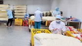 Sản phẩm bún dưa hấu, bún thanh long của Công ty TNHH Duy Anh đóng gói, xuất khẩu sang thị trường Mỹ và châu Âu