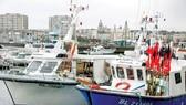 Tàu đánh cá nhỏ của Pháp neo đậu tại cảng Boulogne-sur-Mer