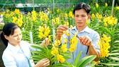 Phấn đấu 100% xã tại huyện Củ Chi đạt tiêu chuẩn nông thôn mới vào năm 2019