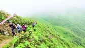 Ký sự Marathoner: Vượt đỉnh Hoàng Liên Sơn hùng vĩ