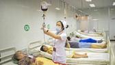 Chuyên gia nước ngoài hỗ trợ Việt Nam phát triển lĩnh vực huyết học