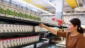 Người tiêu dùng Singapore tìm hiểu về sữa tươi organic tại quầy dùng thử sản phẩm sữa Vinamilk trong các siêu thị