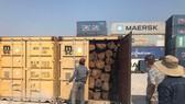 Phát hiện hàng trăm container gỗ xuất khẩu trốn thuế