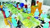 Xuất khẩu nông sản vào Thái Lan tăng