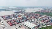 Ngành logistics tăng tốc trước yêu cầu số hóa