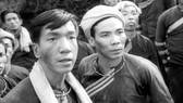 Tuần phim Việt trên VTV Go