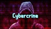 Tội phạm mạng khiến nền kinh tế toàn cầu thiệt hại hơn 1.000 tỷ USD. Ảnh: nst.com.my