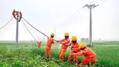 Thi ảnh đẹp và sáng tác ca khúc về ngành điện TPHCM