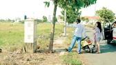 Ngăn sốt đất để tránh hệ lụy