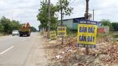 Cần Giờ: Cấm cán bộ môi giới, mua bán đất đai