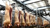 Ngành sản xuất, chế biến thực phẩm gặp nhiều khó khăn
