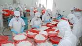 Chế biến mực xuất khẩu tại Công ty APT