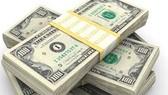 USD tăng mạnh do FED dự kiến tăng lãi suất