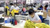 Lao động trong ngành may mặc rất cần được đào tạo thêm nghề phụ để phòng khi thất nghiệp