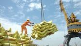 Xuất khẩu: Vừa ngoi lên đã bị dập xuống