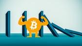 Bitcoin: Vàng số hay tulip?