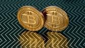 Bitcoin lần đầu vượt mốc 50.000 USD