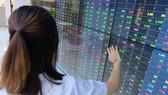 Nhiều nhân sự thuộc các công ty chứng khoán ở Hà Nội vẫn đang chờ giấy đi đường. Trong ảnh là một nhà đầu tư đang theo dõi thị trường - Ảnh: BÔNG MAI