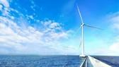 Các turbines Nhà máy điện gió số 7 tại thị xã Vĩnh Châu, tỉnh Sóc Trăng - TUẤN QUANG