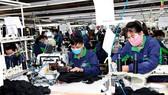 Điểm yếu hệ thống thông tin thị trường lao động Việt Nam