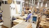 Sản xuất đồ gỗ xuất khẩu sang thị trường EU tại Công ty CP WOODSLAND Tuyên Quang. (Ảnh: TTXVN)