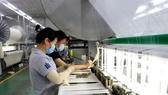 Công nhân sản xuất tại Công ty SIGMA (Khu công nghiệp Đức Hòa III-Anh Hồng, huyện Đức Hòa, Long An. (Ảnh: Bùi Giang/TTXVN)