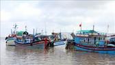 Thêm nhiều biện pháp chống khai thác hải sản bất hợp pháp