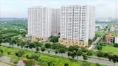Tổ hợp chung cư nhà ở xã hội HQC Plaza, nằm ở đại lộ Nguyễn Văn Linh (huyện Bình Chánh, TPHCM). Ảnh: HOÀNG HÙNG