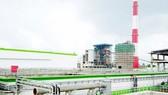 Một góc Cụm công nghiệp Giấy Lee & Man
