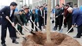 Chủ tịch Quốc hội Nguyễn Thị Kim Ngân và các Phó Chủ tịch Quốc hội tự tay trồng cây tại sân Nhà Quốc hội. Ảnh: TTXVN