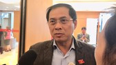 Thứ trưởng Bộ Ngoại giao Nguyễn Thanh Sơn trả lời phỏng vấn sáng 21-11