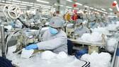 ADB dự báo kinh tế Việt Nam tăng trưởng 1,8%  