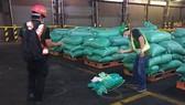 Bắt thêm lô hàng 276 kg ma tuý trong đường dây ma tuý lớn nhất từ trước tới nay.