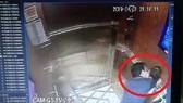Hình ảnh vụ việc Nguyễn Hữu Linh sàm sỡ bé gái trong thang máy. Ảnh: cắt từ clip