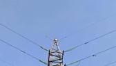 Giải cứu người phụ nữ leo lên cột điện cao thế ở TP Thủ Đức