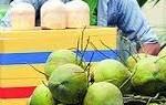 Bị phạt bán dừa vi phạm phòng chống dịch, doạ chém tổ công tác