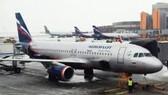 Để lọt khách bị cấm bay, 3 nhân viên hàng không bị xử phạt 4 triệu đồng/người